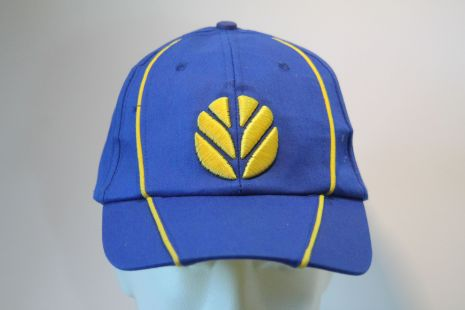 NH cap  blue/yellow stripe and logo
